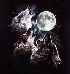 3wolfmoon250.jpg