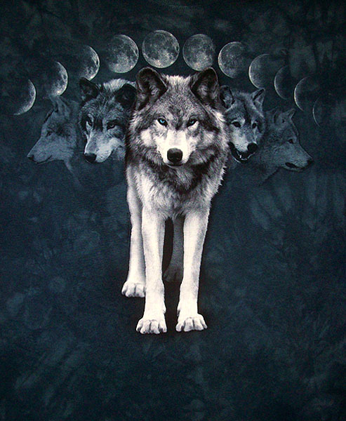 Fifty Shades of Blue Wolf_moon600
