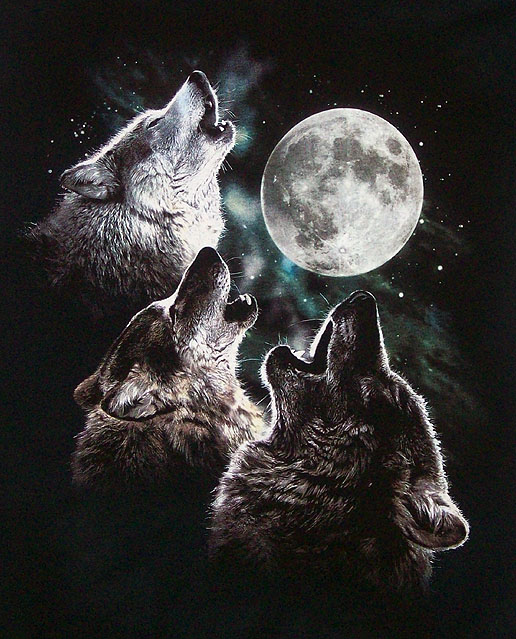 3 wolves howling at full moon